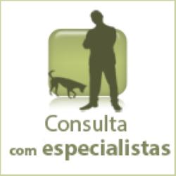 icon-cons-especialista
