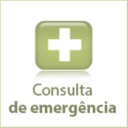 icon-consulta-emergencia
