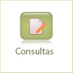 icon-consultas