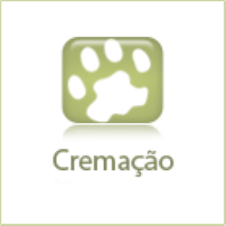 icon-cremacao