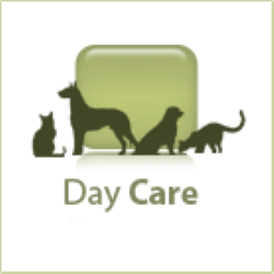 icon-day-care