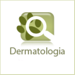 icon_dermatologia